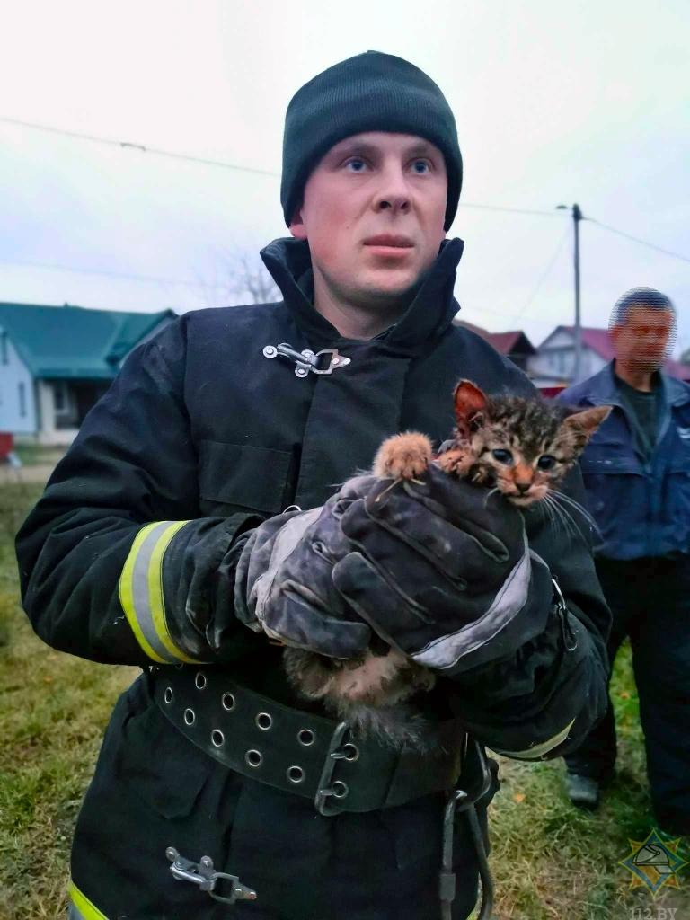 В Сморгонском районе спасатели оказали помощь котенку.